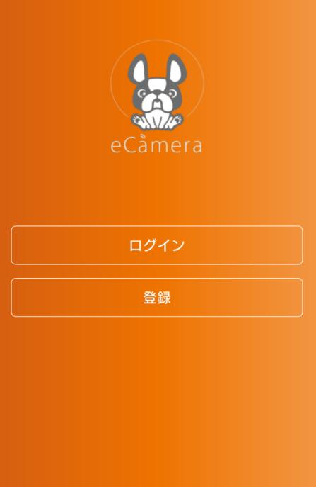 step5画像